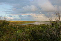 Pea Island, North Carolina