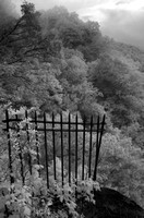 The Gate - Overlook at Hawks Nest SP, WV