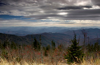 Evening at Clingman's Dome