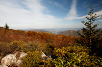 Autumn in Dolly Sods